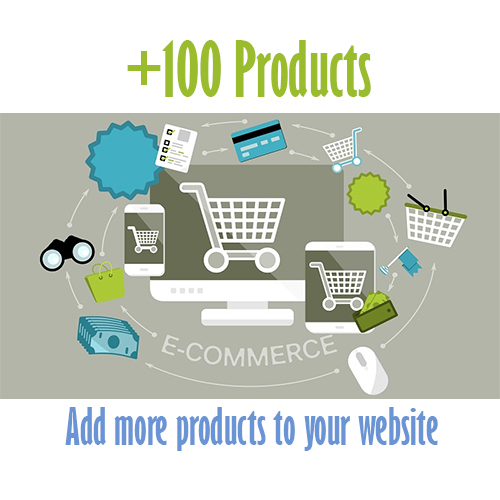 100 extra products Cheap website design