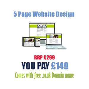 Cheap 5 page website design