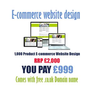 cheap 1000 product ecommerce website design
