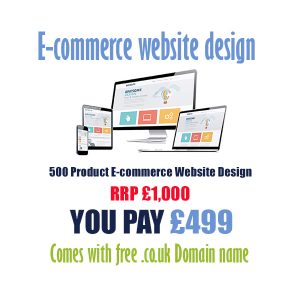 cheap 500 product ecommerce website design